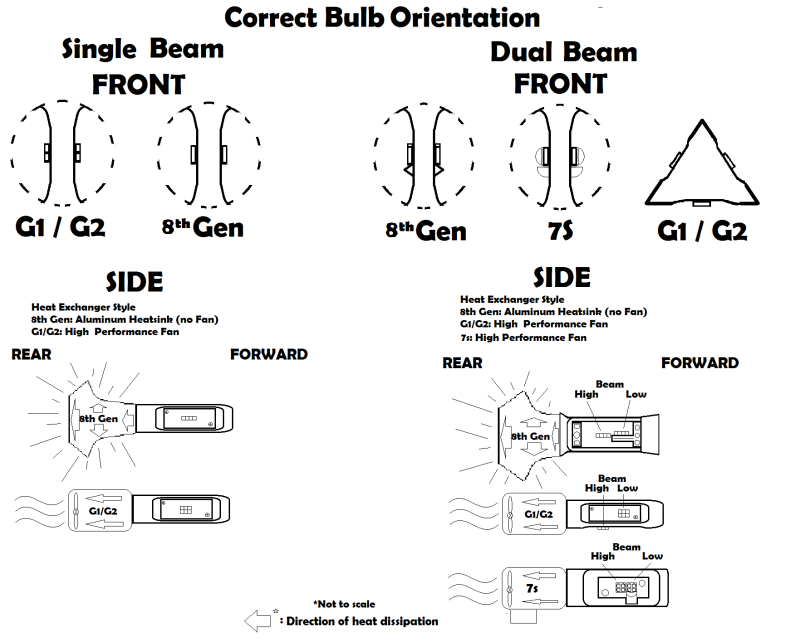BULBS ORIENTATION redux.png